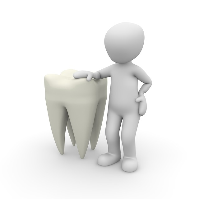 Dental Insurance In Florida